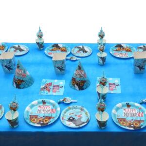 חבילת מסיבת פיראטים ל – 16 חוגגים